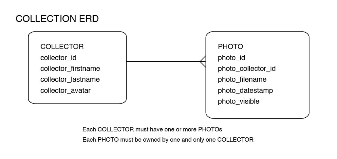collection_erd-01