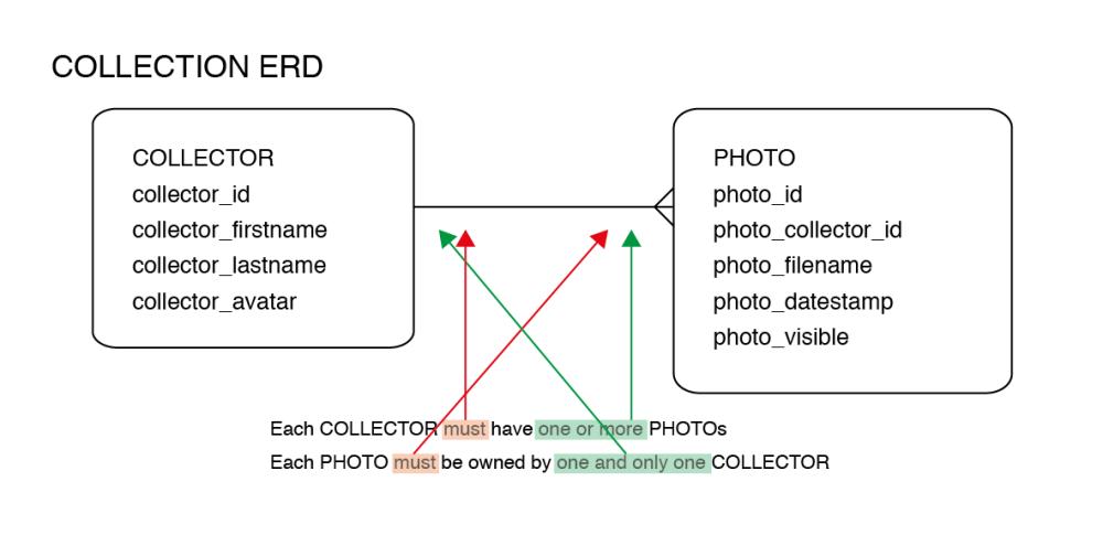collection_erd-02
